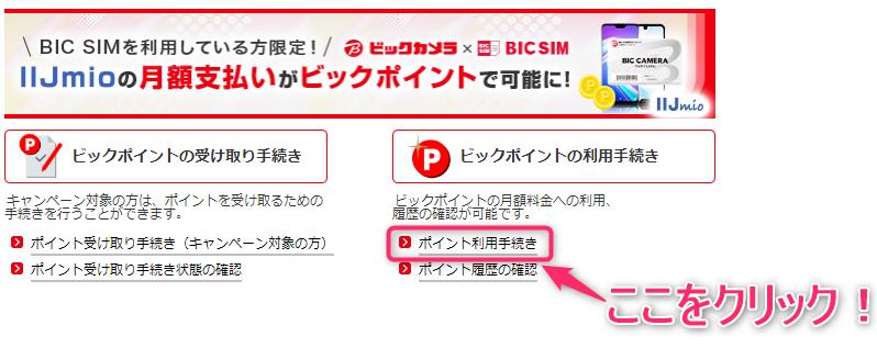 BIC SIM ポイント利用手続き その2